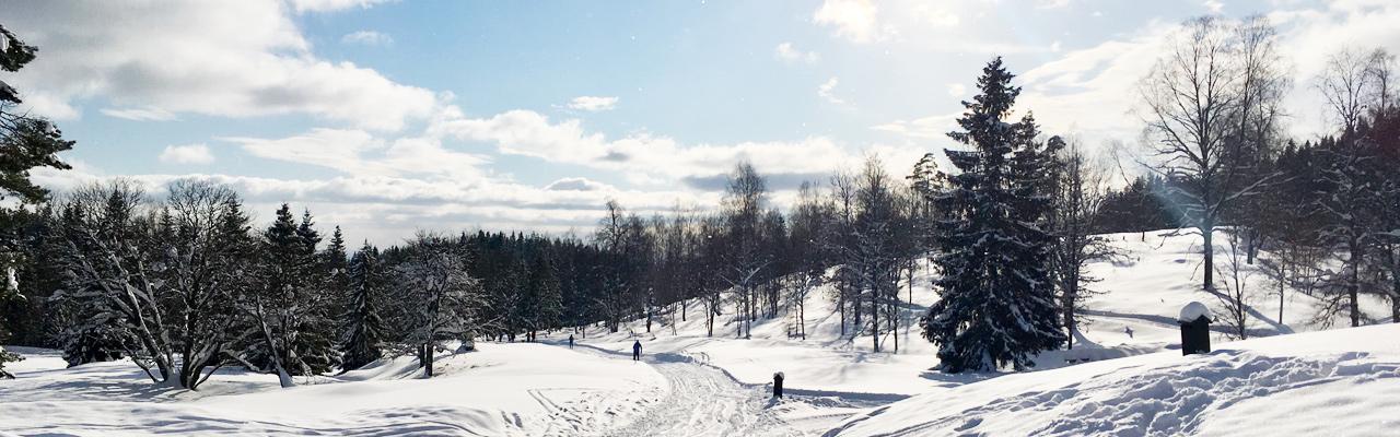 Slide-Norway-2019